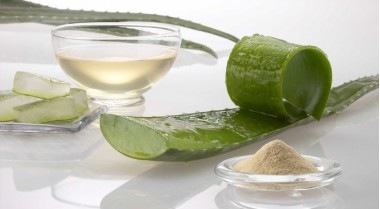 Aloe Vera, natural remedy to reduce cholesterol
