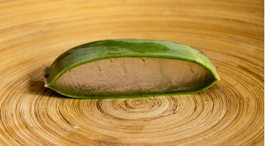 Aloe Vera to counteract the side effects of chemotherapy
