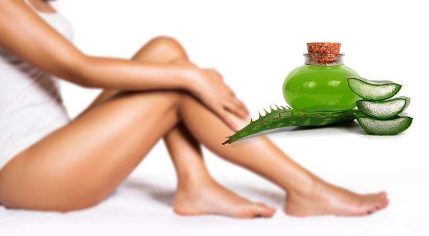 Aloe Vera to care for and treat ulcers on the skin